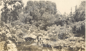 Image of Eugene J. de Sabla Tea Garden, San Mateo