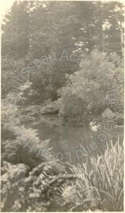 Image of Japanese Garden, Golden Gate Park